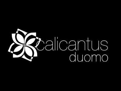 Logo Calicantus Duomo