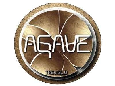 Logo Agave