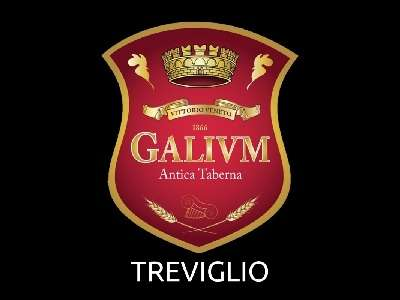 Logo Galivm